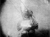 Una delle prime fotografie subacquee: Louis Marie Auguste Boutan