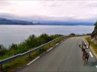 Fotografie: le strane 'rivelazioni' di Google Street View