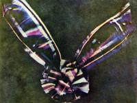 La prima foto a colori